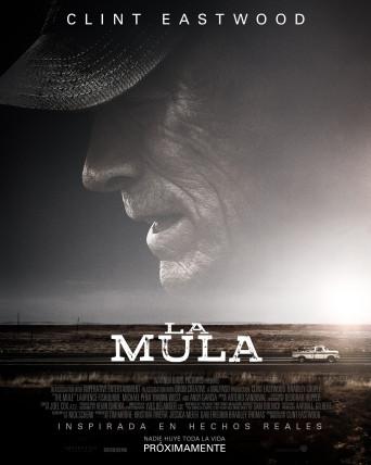 Poster de:2 Mula